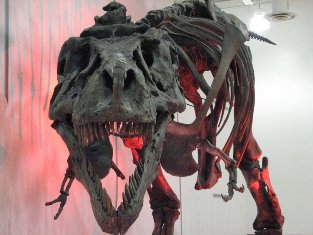 Sue, the Tyrannosaurus rex in Faith, South Dakota