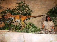 Dinosaur and human being, side by side in the Creation Museum