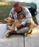 Video: Dog Cries When Master Returns from Afghanistan
