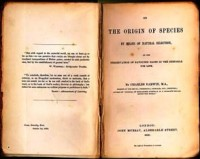 On the Origin of Species by Means of Natural Selection or the Preservation of Favoured Races in the Struggle for Life, by Charles Darwin (CLICK TO ENLARGE)