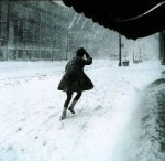 Blizzard Dampens Global Warming Protest Numbers